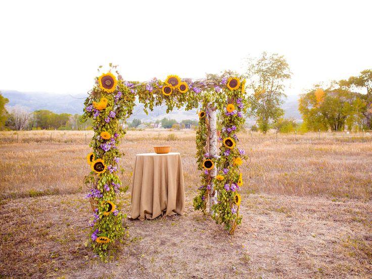 Short-stemmed sunflowers mean adoration; long-stemmed sunflowers symbolize haughtiness