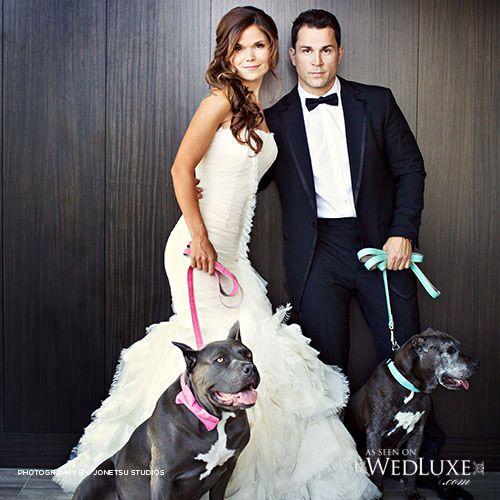 Vanessa & Scott and the ring bearers...  #DreamGroupWedding