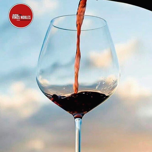 ¿Sabes qué son los taninos? Son una sustancia química que proviene de las uvas y la madera y le dan un sabor seco, áspero, rugoso y astringente al vino. #VinosNobles