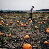 Nasli sme ho!!!Dokonaly pumpkin patch😍😍😍🎃 #autumnmood #autumnal #pumpkin #pumpkinpatch #slovakia