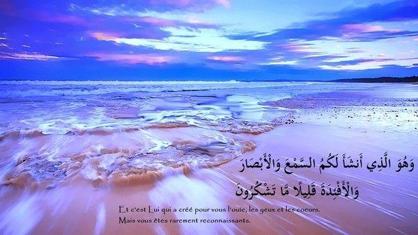 Fond D Ecran Islam 3 Islam Natural Landmarks Nature