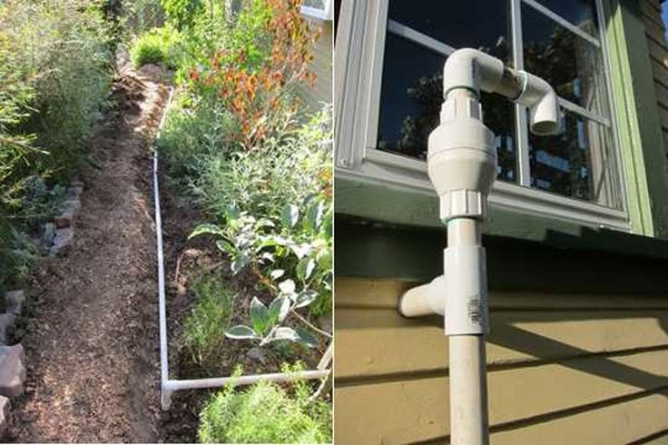 Laundry To Landscape: Greywater Gardens — The Gardenist