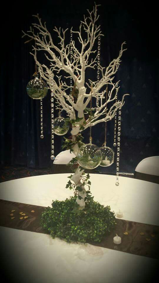 Our beautiful Manzanita tree. Enchanted forest theme for 50th birthday.  #aphroditesweddings