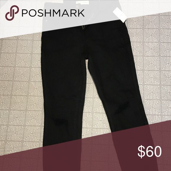PacSun black distressed jeans These are unworn with tags still on. They don't fit me and never did but they are really cute! They look short in this picture but only because the cropping was weird in the app. They are high rise! PacSun Pants Skinny