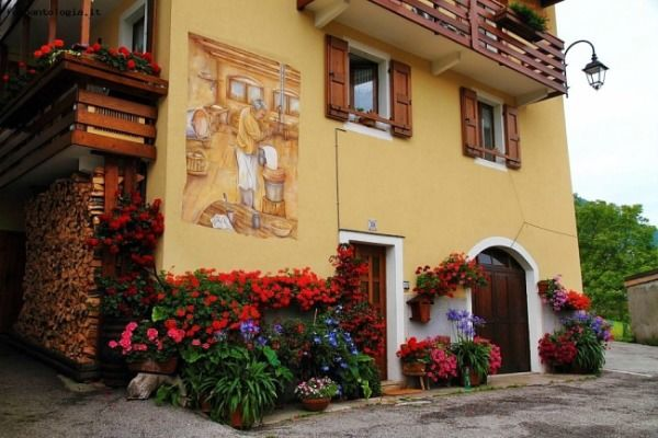 la Guardia - www.fotoantologia.it  Beautiful Mountain House in Folgaria Trentino, Italy  Flowers