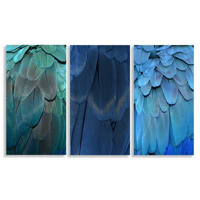 Feathers 3 Piece Canvas Print