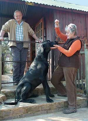Stone Hill Self Catering Cottages - a pet friendly venue