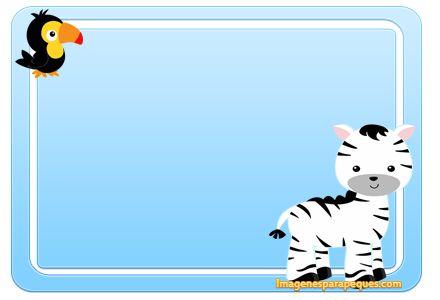 Imágenes con cebritas - imágenes con cebras bebes - etiquetas stickers animalitos safari - stickers etiquetas animales selva