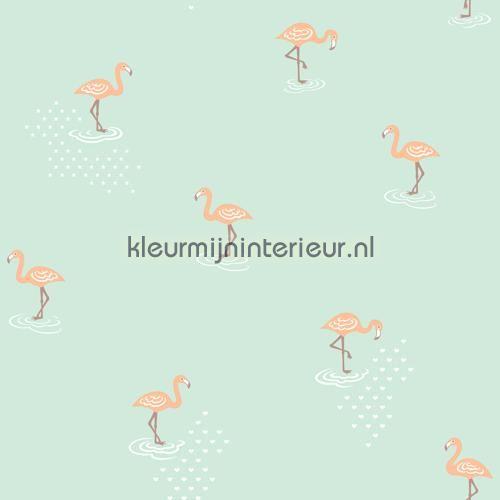 Flamingo mint behang JR 2007, uit de collectie Jack n Rose Junior van Hookedonwalls, koop je bij kleurmijninterieur