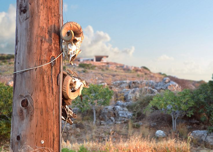 Gotta hang some skulls by lucanii  on 500px - Greece, Crete, Kolimbari