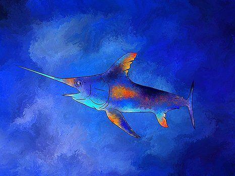 Kauderon V1 - beautiful swordfish by Cersatti