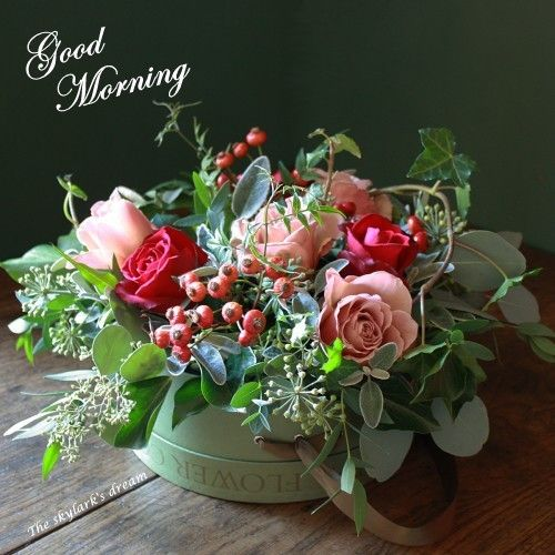 Good Morning Winter Flower : Best images about good morning or is it night