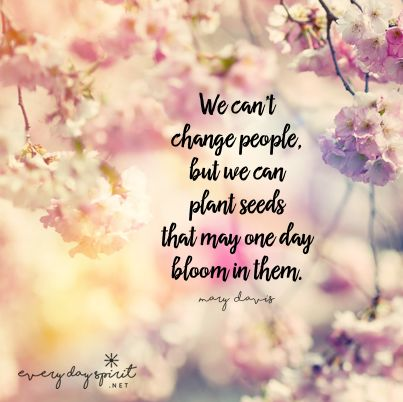 We Canu0027t Change People, But We Can Plant Seeds That One Day Might Bloom In  Them