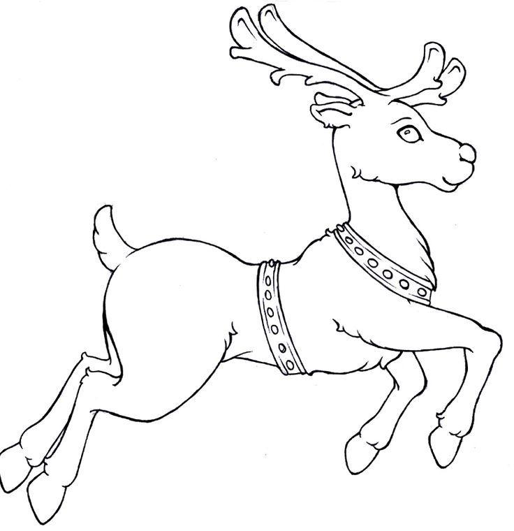 reindeer coloring pages deer coloring