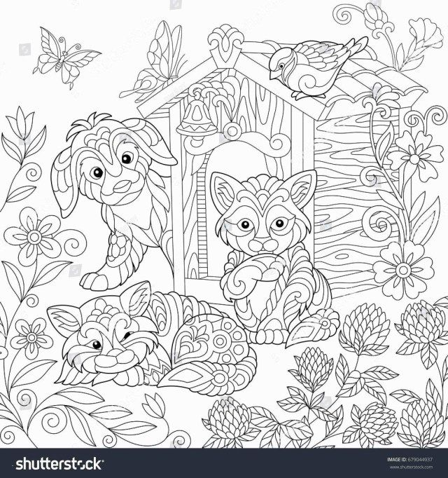 27 Brilliant Image Of Gecko Coloring Page Dog Coloring Page