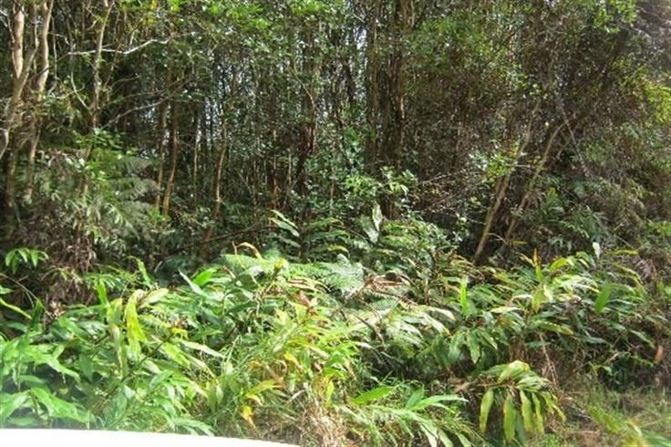 Road 5 , Aloha Estates Subdivision  Hawaii Information Service Property Search