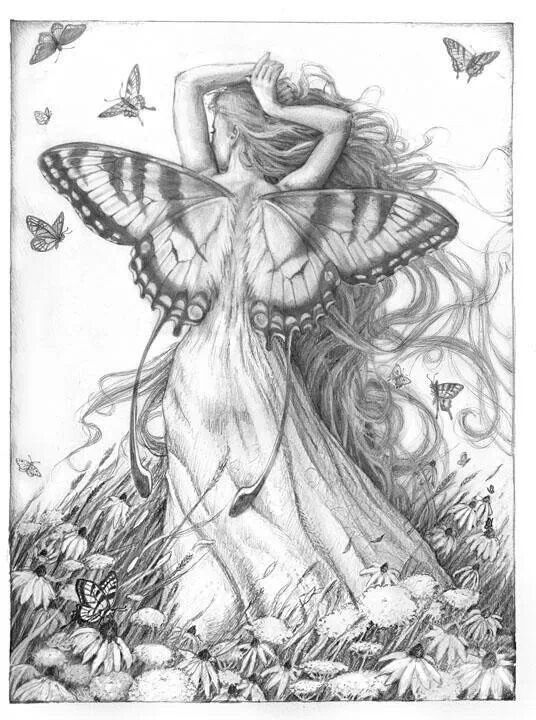 25 best images about pencil drawing of fairies on ...