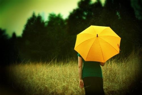 Umbrella YellowYellow Umbrellas, Deviant Art, Favorite Things, Colors Rose, Art Photography, Mellow Yellow, Photography Women, Photography Art, Vintage Rose