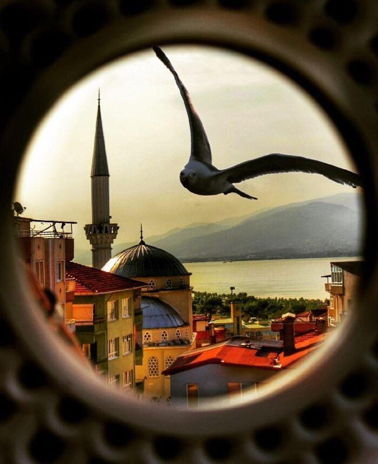 """2,073 Beğenme, 32 Yorum - Instagram'da Tag ☞ #aziz_istanbul (@aziz.istanbul): """" TEBRİKLER _________________________________ Bu Değerli Fotoğrafın sahibi Copyright…"""""""