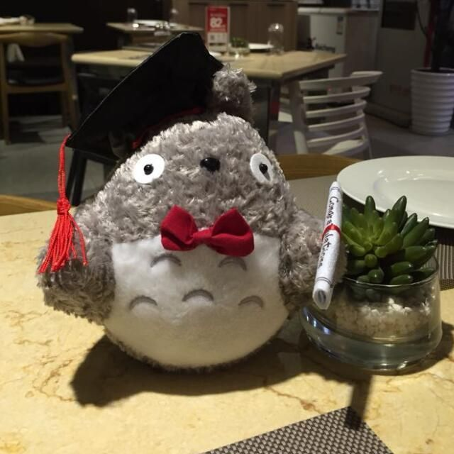 1pcs 20cm plush doctor Dr. Totoro learn to read Totoro Hat plush toy doll Graduation Gift Plush Doctorial hat Totoro with bow
