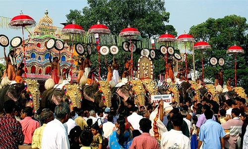 THRISSUR POORAM | Wilderness Wellness Experiences