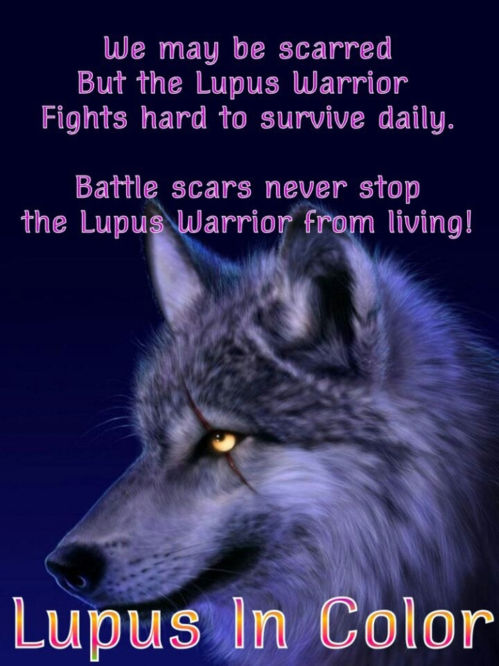 164 Best Lupus Images On Pinterest Lupus Tattoo Butterfly Tattoos