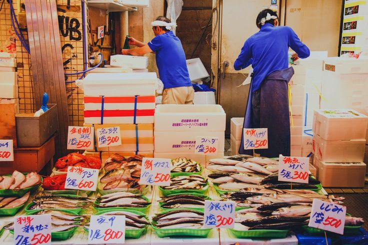 The Tsukiji Fish Market and Auction in Tokyo Japan