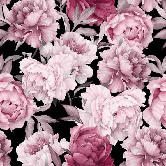 Removable Wallpaper Pink Peony On Black Background Peel Etsy Pink And Black Wallpaper Black Background Wallpaper White Background Wallpaper