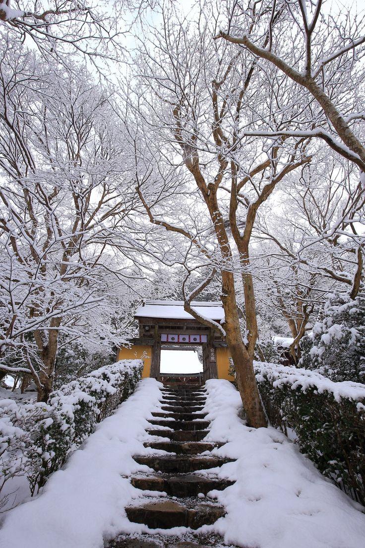 見事な雪につつまれた寂光院の雪の花と山門