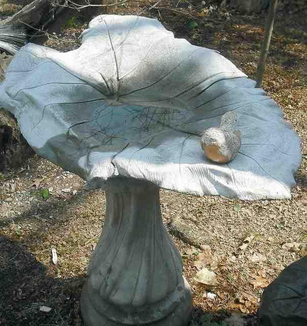 Bird Bath Bowl Concrete Mold Yard Garden Pinterest