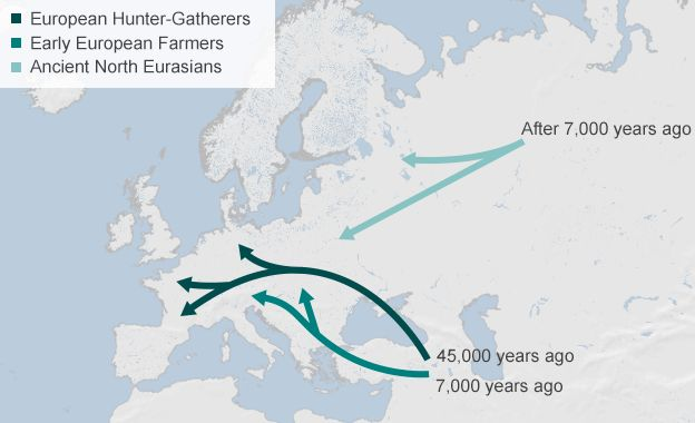 Most present-day Europeans are a mixture of three ancient populations, according to a major study published in the journal Nature.