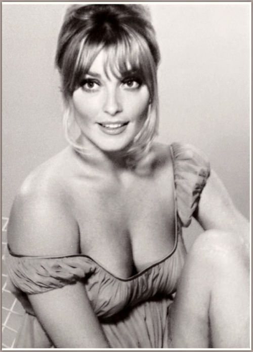 Sharon Tate by Virgil Apger (1966)