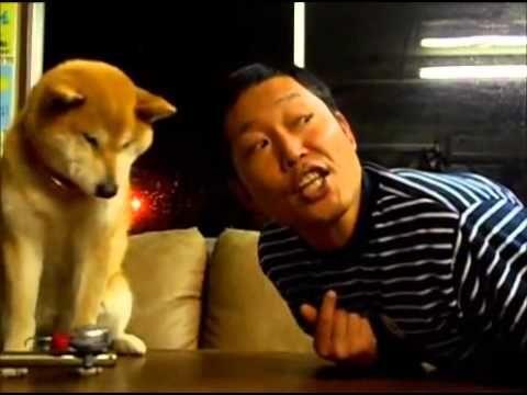 Pies nie chce sie calowac!