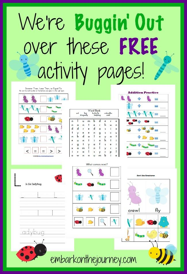 Study bugs and insects this spring with these free printable activity pages. | embarkonthejourney.com