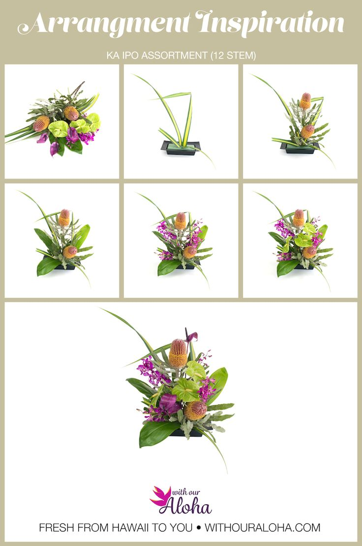 8 best diy hawaiian flower arranging images on pinterest hawaii tropical flower arrangement diy ka ipo assortment izmirmasajfo Choice Image