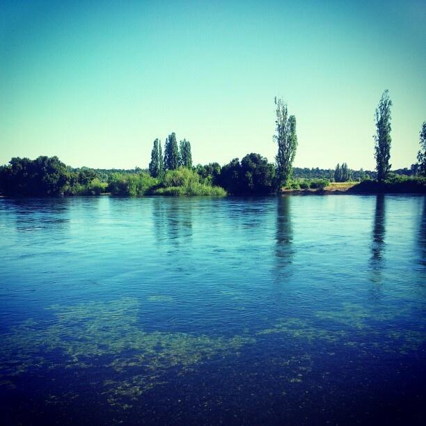 Río cocule #RegionDeLosRios
