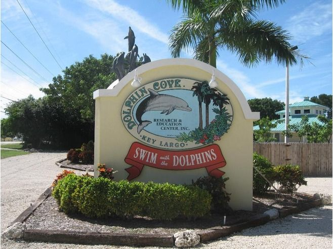Key Largo Florida | 31 Things To Do in Key Largo, Florida