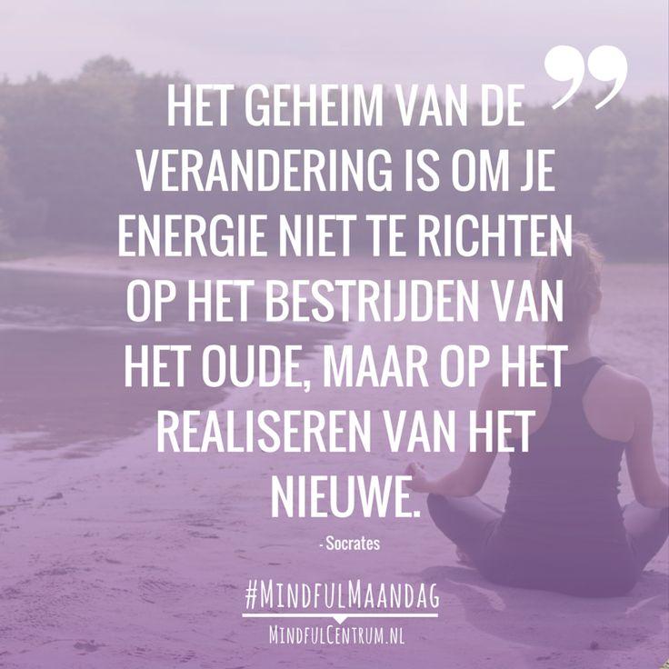 Het geheim van verandering is om je energie niet te richten op het bestrijden van het oude maar op het realiseren van het nieuwe.  Waar richt jij je energie op? Waar ben je eigenlijk met je aandacht? Bij oude koeien uit de sloot? Steeds maar bezig met wat niet goed, leuk of fijn was? In je relatie, je... Lees verder via: http://www.mindfulcentrum.nl/mindfulmaandag-het-geheim-van-verandering/