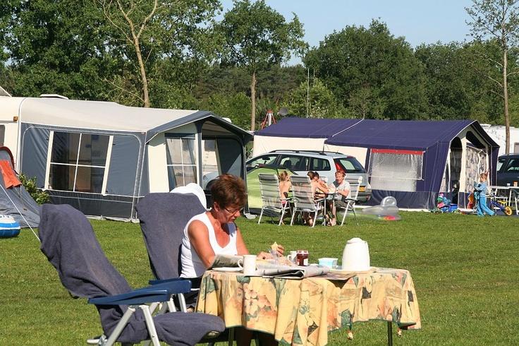 Ruime kampeerplaatsen op veld Eik