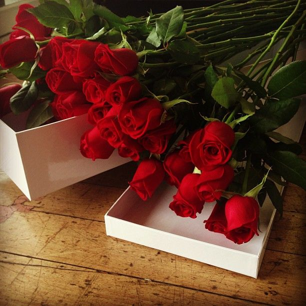Red Roses... Premium Long Stem Australian Grown