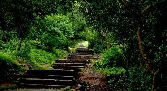 Nandi Hills Photos - Check out ನಂದಿ ಬೆಟ್ಟ ಚಿತ್ರಗಳು, ಮೆಟ್ಟಿಲುಗಳು photos, Nandi Hills images & pictures. Find more Nandi Hills attractions photos, travel & tourist information here.