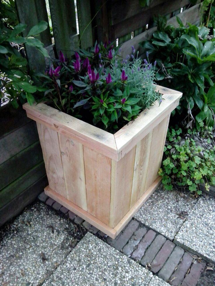 Douglas houten plantenbak. Te koop bij BuBlo op fb