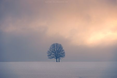 Lonely Photo by Martina Valihrachova — National Geographic Your Shot