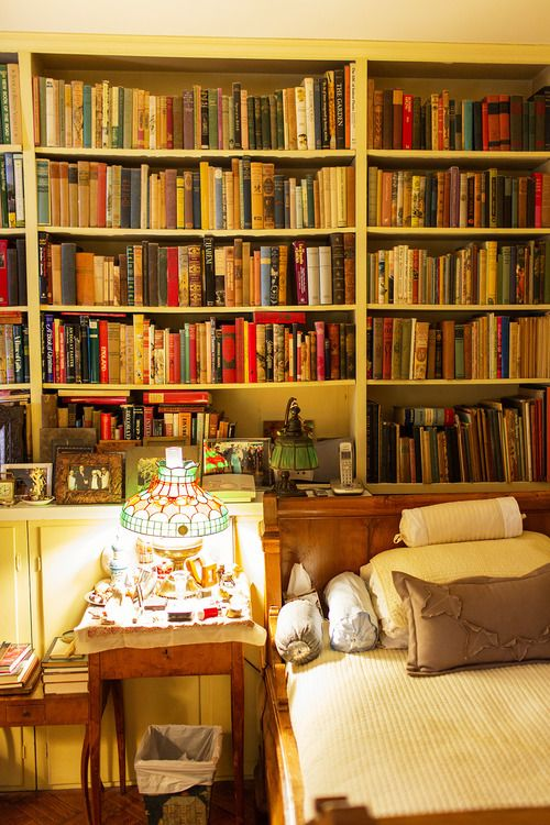 """""""In a good bookroom you feel in some mysterious way that you are absorbing the wisdom contained in all the books through your skin, without even opening them.""""—Mark Twain"""