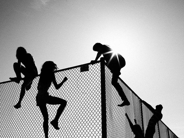 Summer sense. By Chris Searl