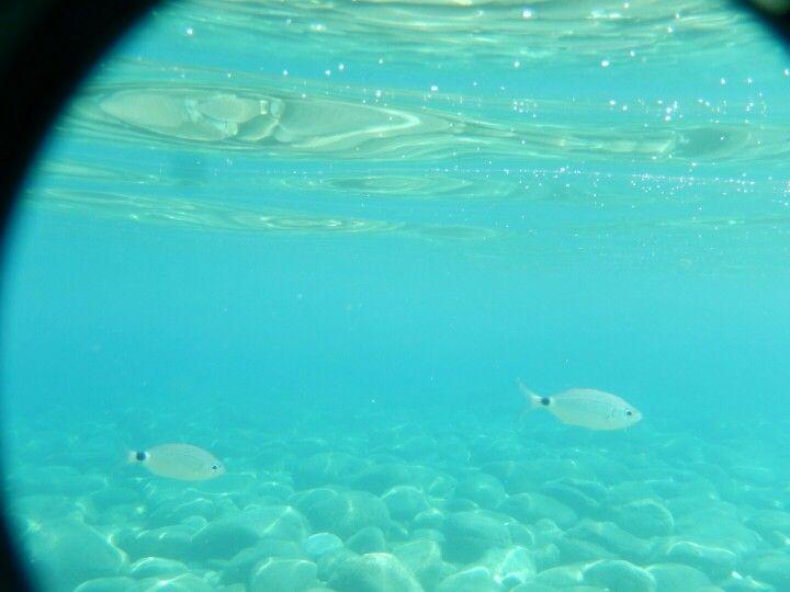 Underwater agios ioannis beach