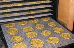 Rawtarian- raw dehydrator recipes. Kale chips, crackers, breads