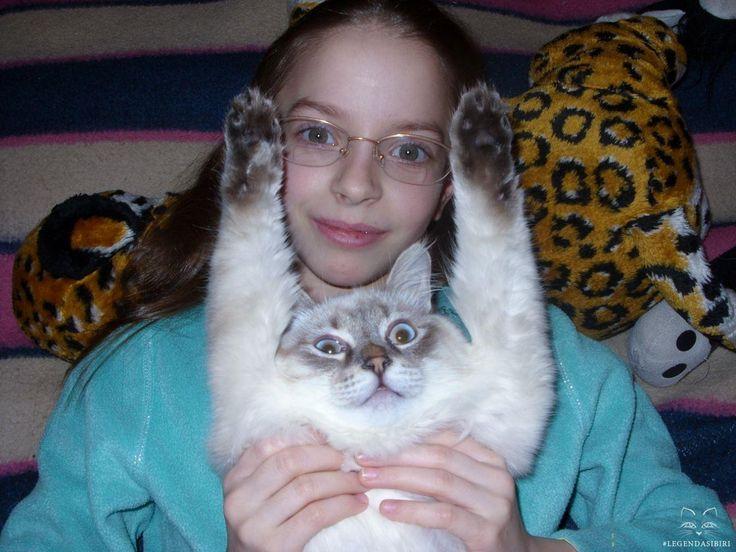 #cat #cats #kittens #legendasibiri #кот #котэ #котик #котики #котята #кошки #питомник #сибирскиекошки  #невскаямаскарадная #легендасибири #сибирскиекошки Ребенок и котенок! 😼👧(Baby and kitten!)