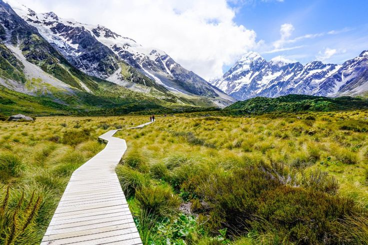 how to go to new zealand for work