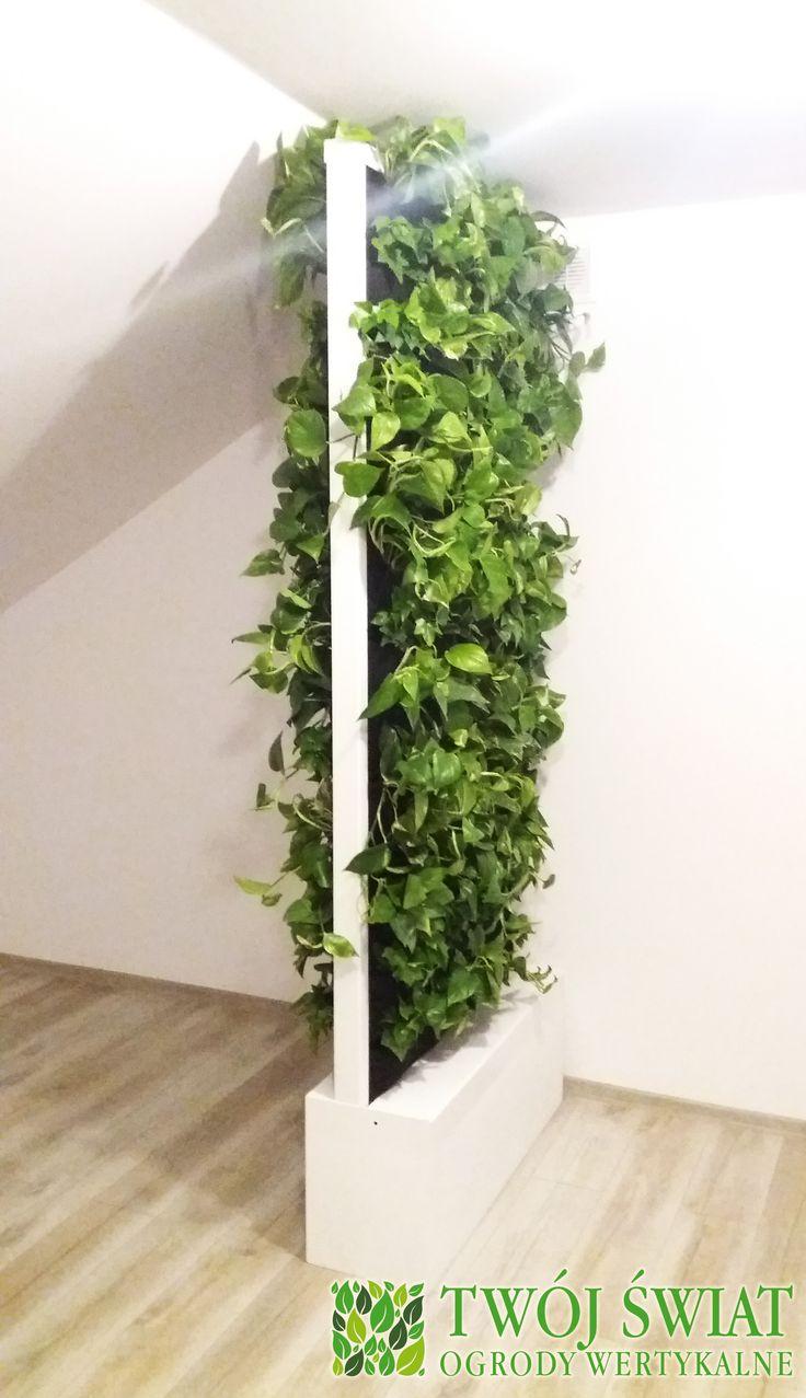Dwustronny ogród wertykalny wykorzystany jako sposób na podział przestrzeni w mieszkaniu. #verticalgarden #zielonesciany